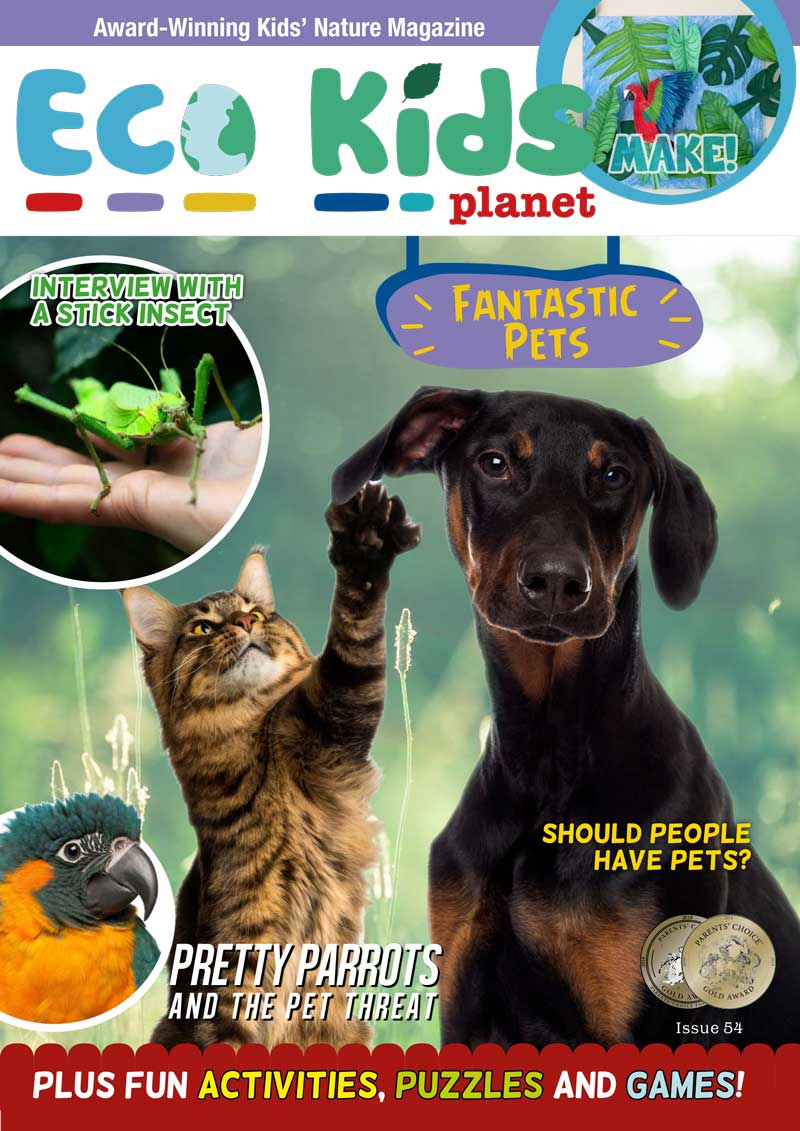 Kid's Nature Magazines - Issue 54 - Fantastic Pets