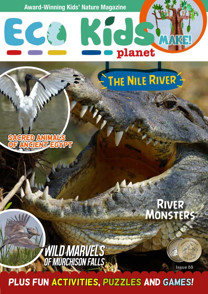 Kid's Nature Magazines - Issue 55 - The Nile River