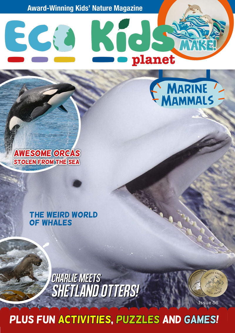 Kid's Nature Magazines - Issue 56 - Marine Mammals