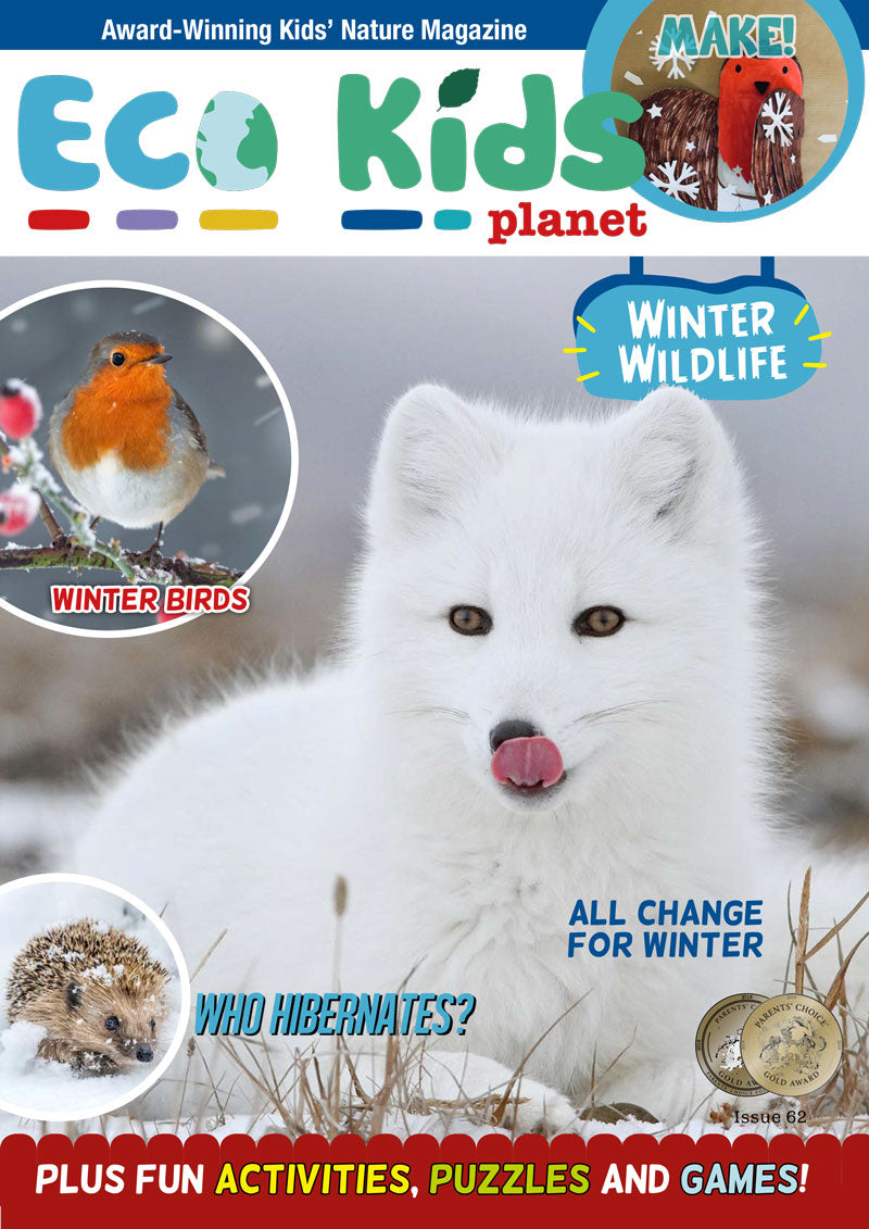 Kid's Nature Magazines – Issue 62 – Winter Wildlife