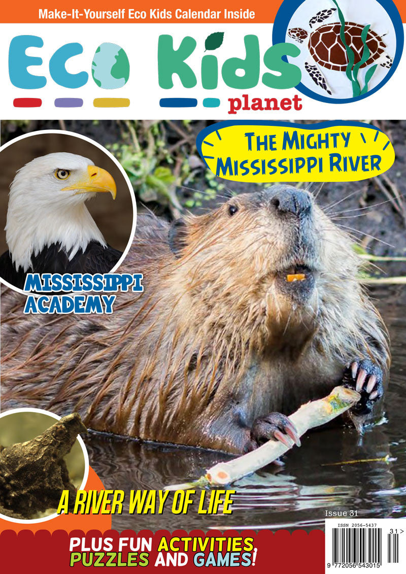 Kid's Nature Magazines - Issue 31 - The Mighty Mississippi River
