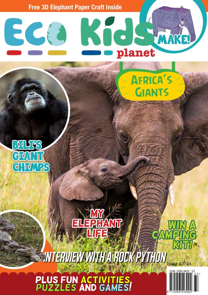 Kid's Nature Magazines - Issue 33/34 - Africa's Giants