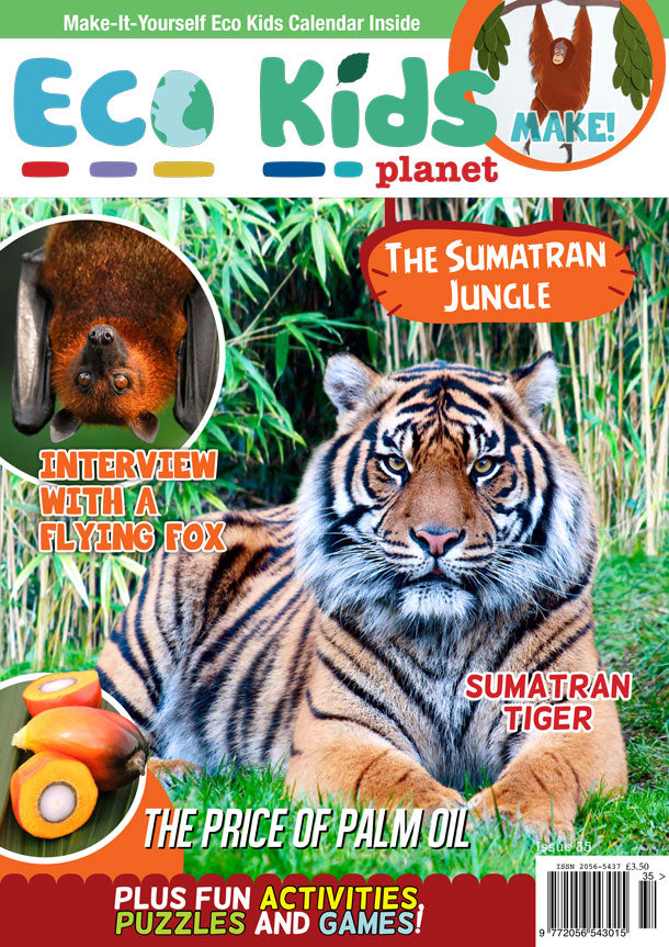 Kid's Nature Magazines - Issue 35 - The Sumatran Jungle