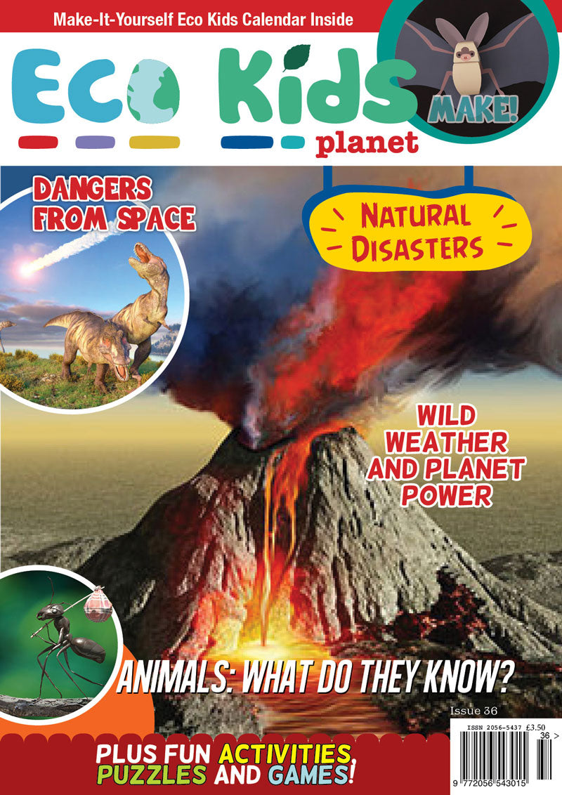 Kid's Nature Magazines - Issue 36 - Natural Disasters