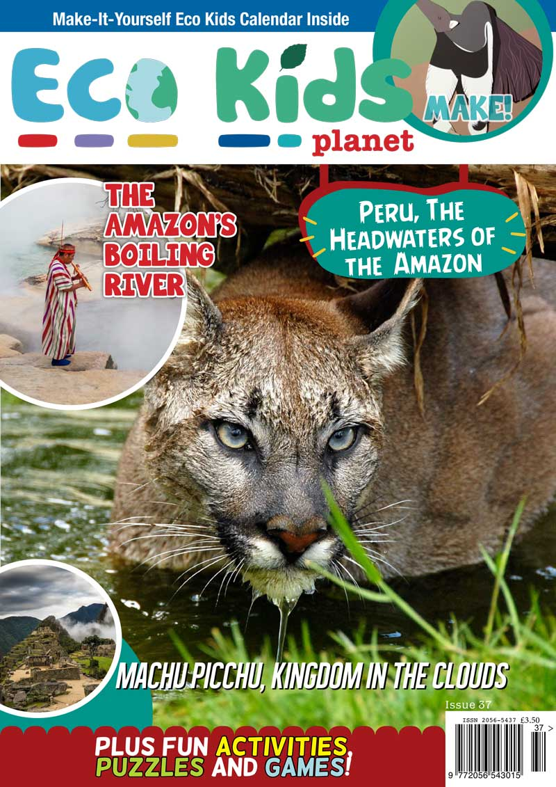 Kid's Nature Magazines - Issue 37 - Peru, The Headwaters of the Amazon