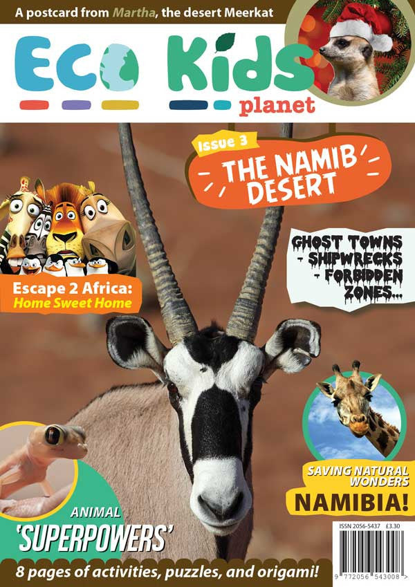 Kid's Nature Magazines - Issue 3 - The Namib Desert