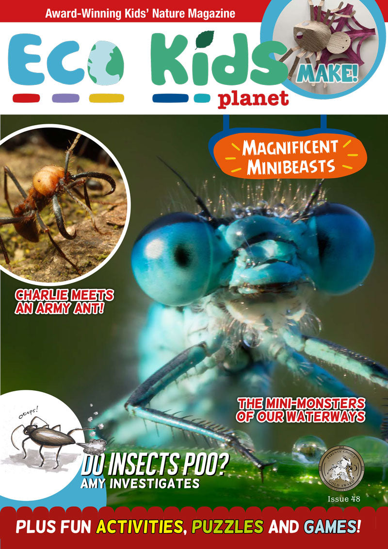Kid's Nature Magazines - Issue 48 - Magnificent Minibeasts