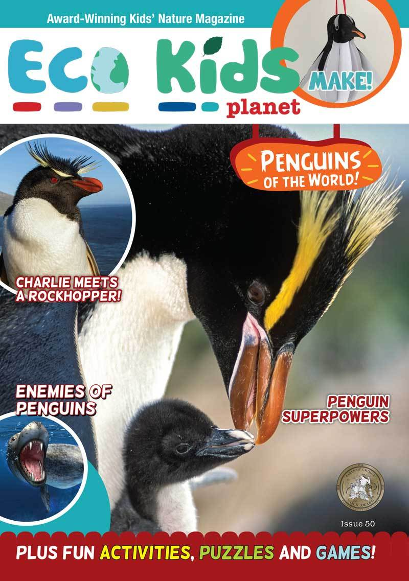 Kid's Nature Magazines - Issue 50 - Penguins of the World