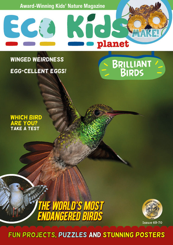 Kid's Nature Magazines - Issue 69/70 - Brilliant Birds