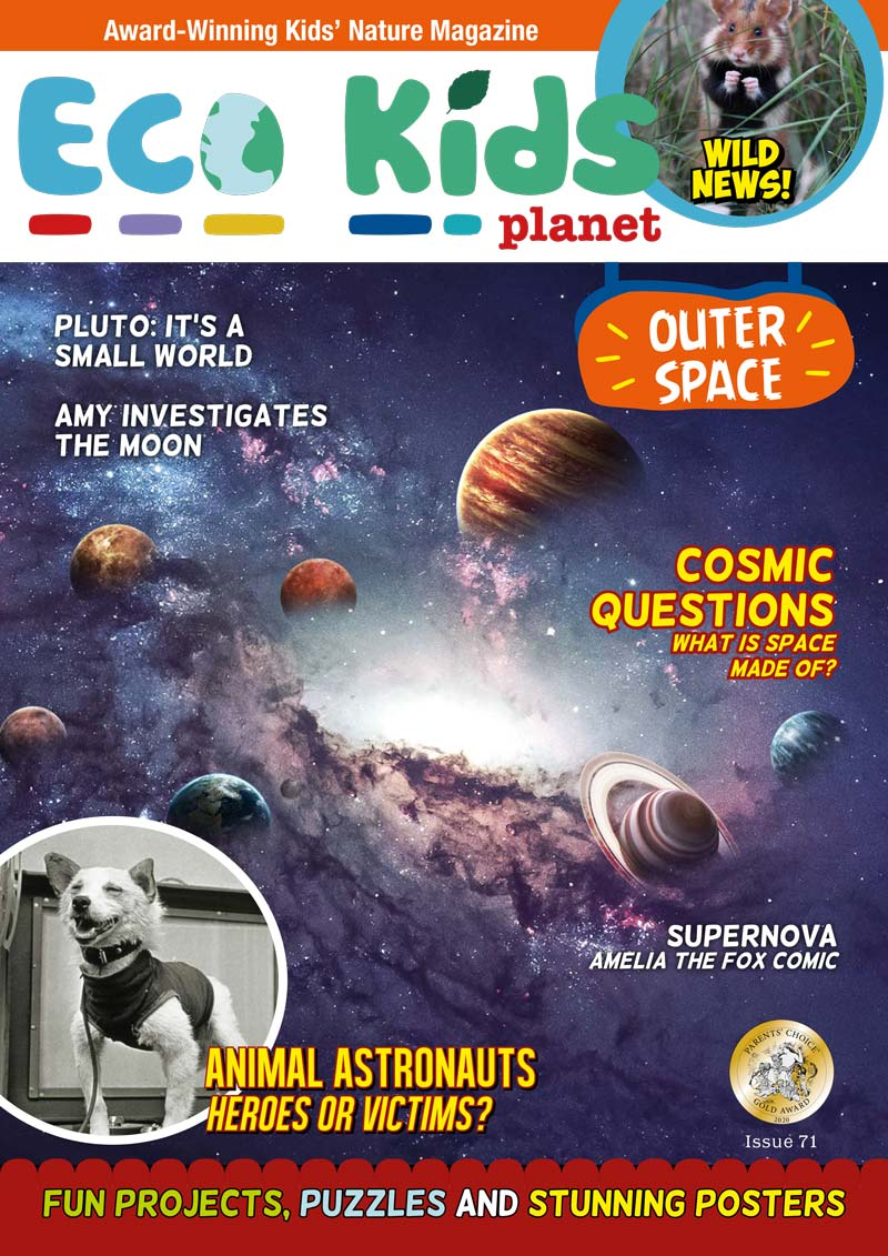 Kid's Nature Magazines – Issue 71 – Outer Space