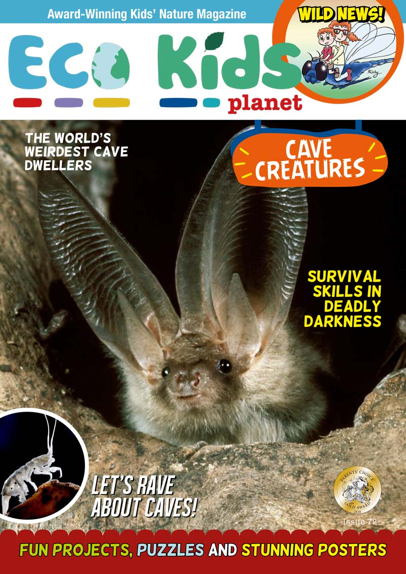 Kid's Nature Magazines – Issue 72 – Cave Creatures