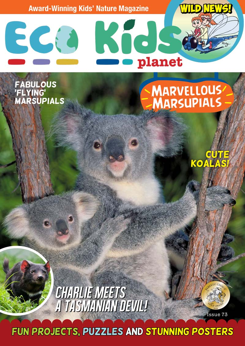 Kid's Nature Magazines – Issue 73 – Marvellous Marsupials