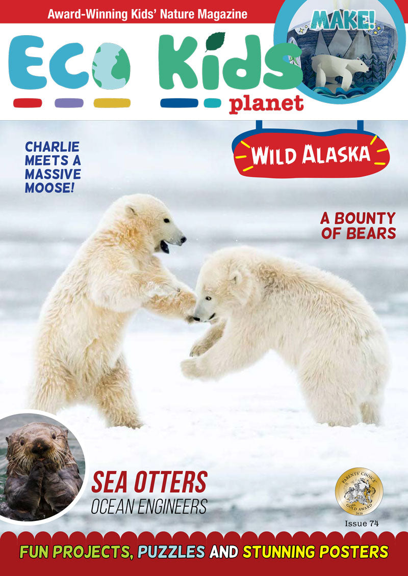 Kid's Nature Magazines – Issue 74 – Wild Alaska