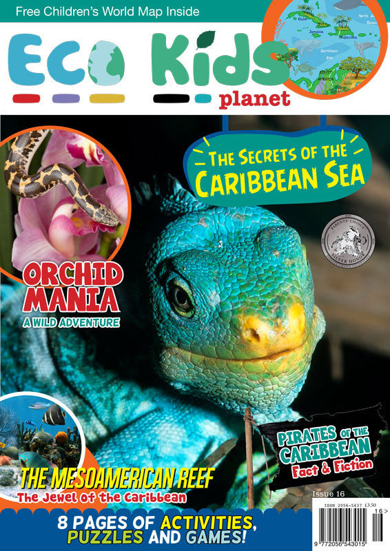 Kid's Nature Magazines - Issue 16 - The Secrets of the Caribbean Sea
