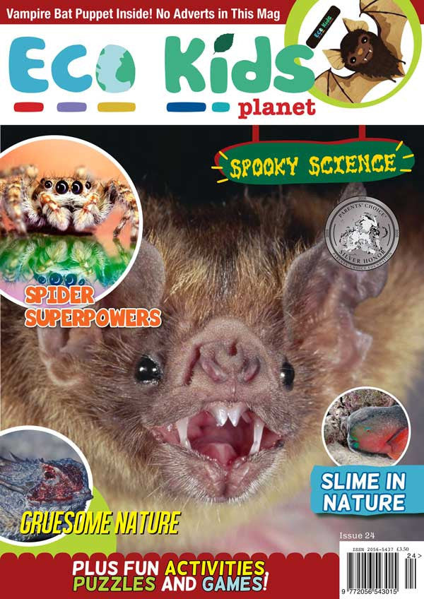 Kid's Nature Magazines - Issue 24 - Spooky Science