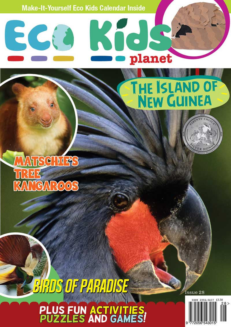 Kid's Nature Magazines - Issue 28 - The Island of New Guinea