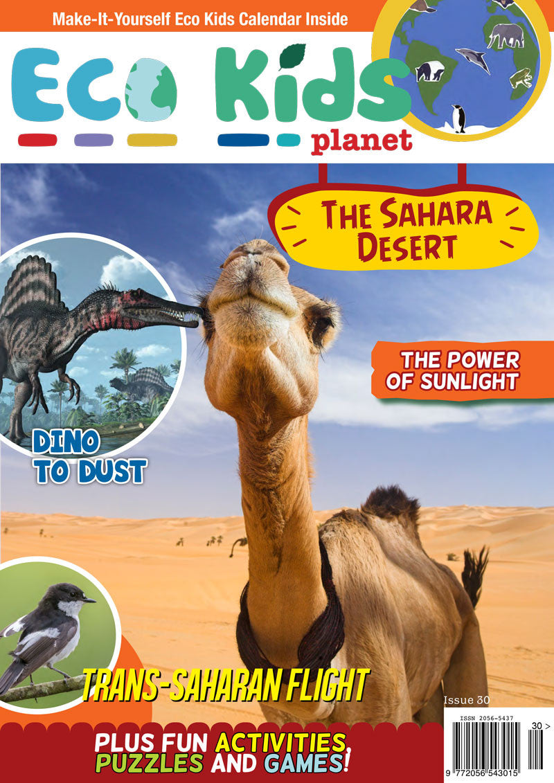 Kid's Nature Magazines - Issue 30 - The Sahara Desert