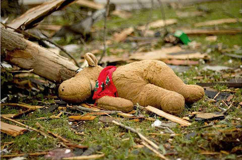 A stuffed animal laying among the wreckage.