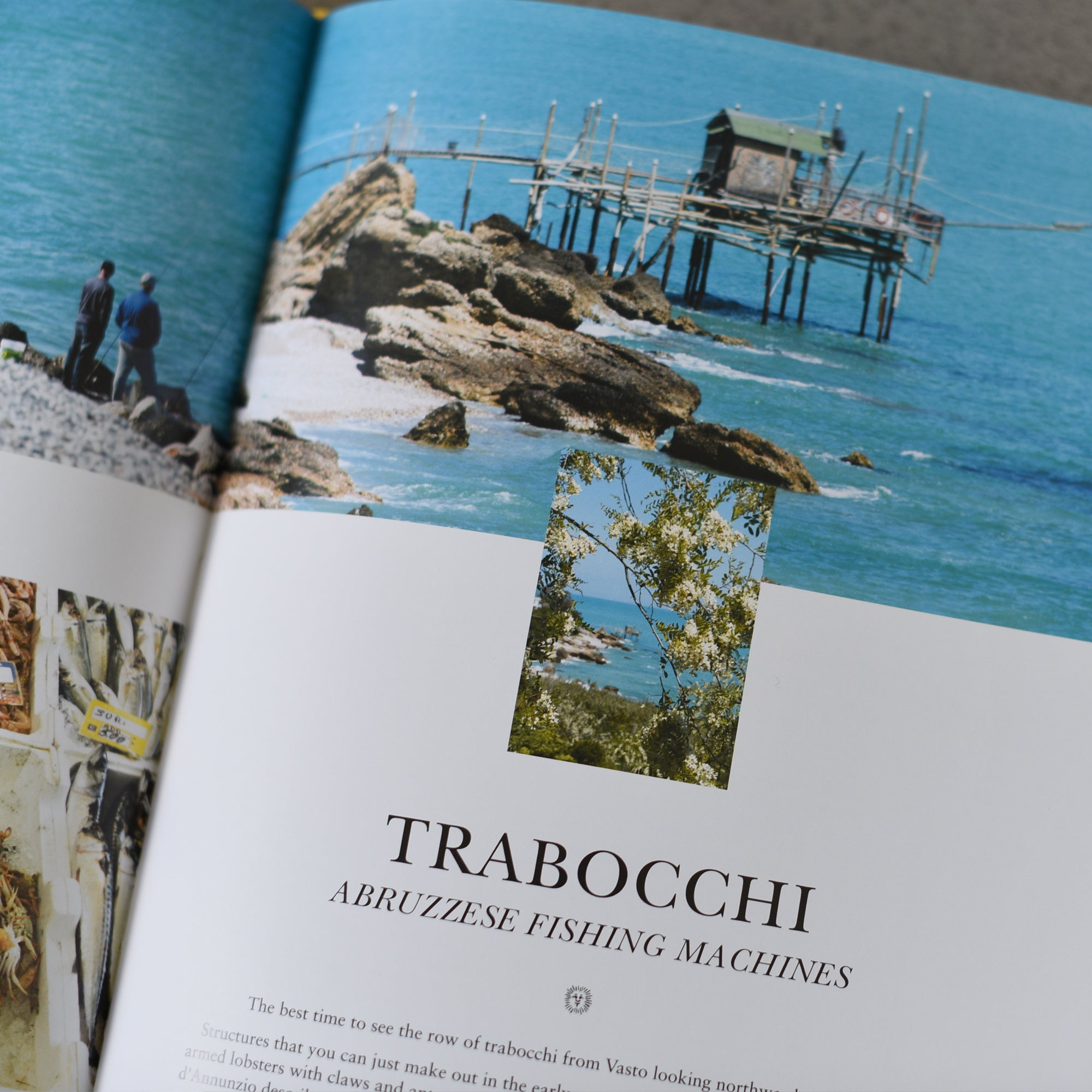 Adriatico: Recipes and Stories from Italy's Adriatic Coast