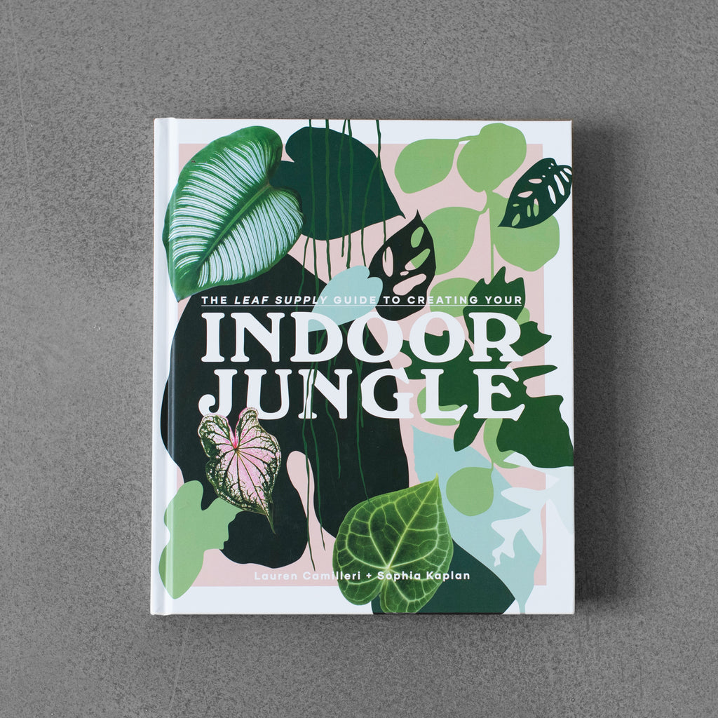 The Leaf Supply Guide to Creating Yours: Indoor Jungle - Lauren Camilleri & Sophia Kaplan