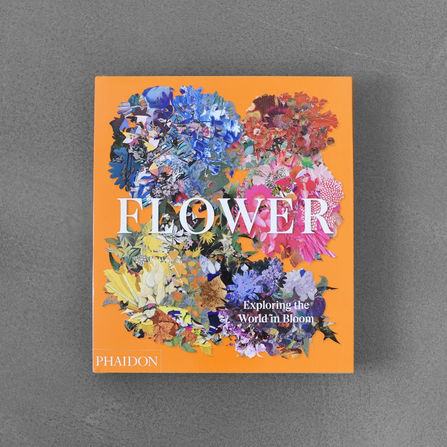Flower - Exploring the World Bloom