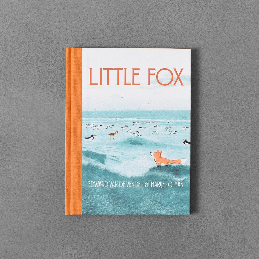 Little Fox - Edward van de Vendel & Marije Tolman