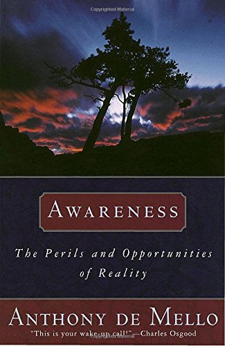 Awareness: The Perils and Opportunities of Reality - Mantrahelp.com