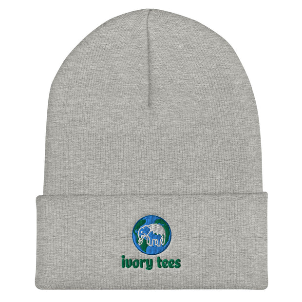 Embroidered EARTH Beanie