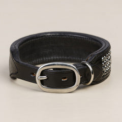 Black Diamond Dog Collar - Mal Byrne Performance Saddlery