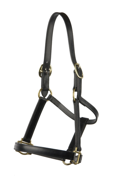 Stitched Leather Halter/Headstall