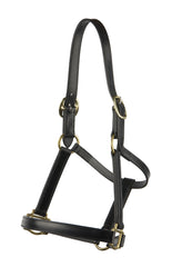 Headstall-Mal Byrne Saddlery