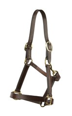 Plain Leather Halter/Headstall - Mal Byrne Performance Saddlery