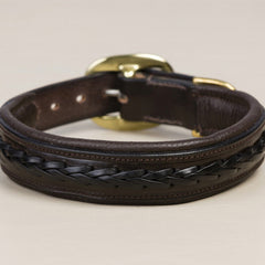 Braided Leather Dog Collar - Mal Byrne Performance Saddlery