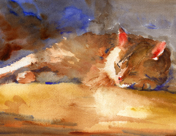 Sleeping Kitty, Fine Art Print