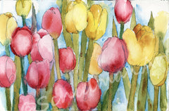 Pink Tulip Party, Fine Art Print