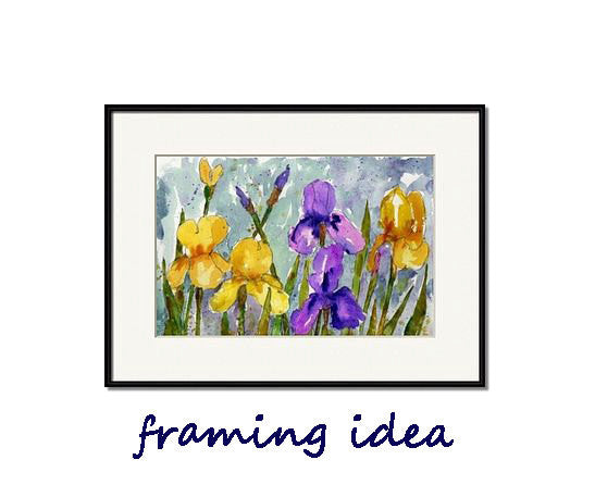 Bearded Irises, Original Watercolor Art