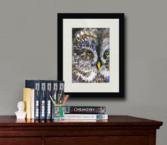 Owl Eyes, Fine Art Print