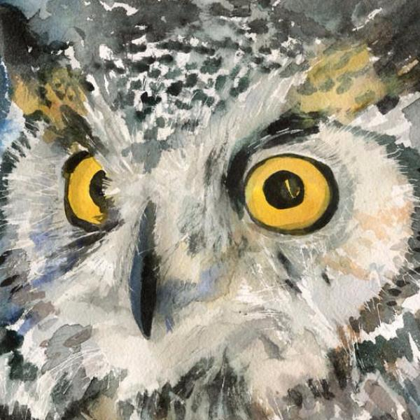 Great Horned Owl - Golden Eyes, Original Watercolor Art