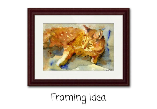 Tabby Lights, Fine Art Print