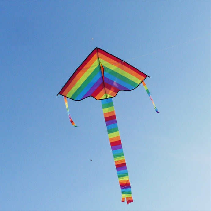Colorful Rainbow Long Tail Nylon Outdoor Kites