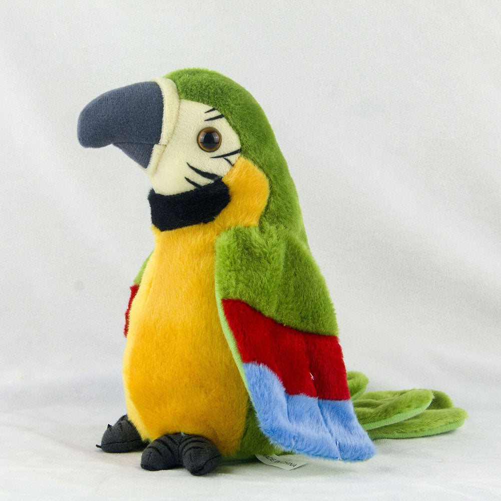 Adorable Talking Parrot