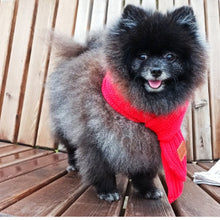 Load image into Gallery viewer, Winter Large Soft Knit Scarf for Dogs