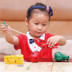 Wooden Educational Montessori Toys