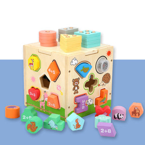 Cognitive Building Block Toy