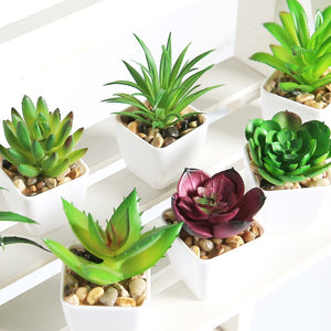 Artificial Succulents with Pot Home Decoration Accessories