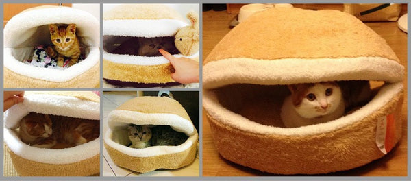 Cozy Clamshell Cat Bed