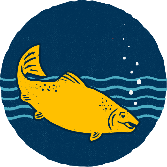Salmon illustration in water