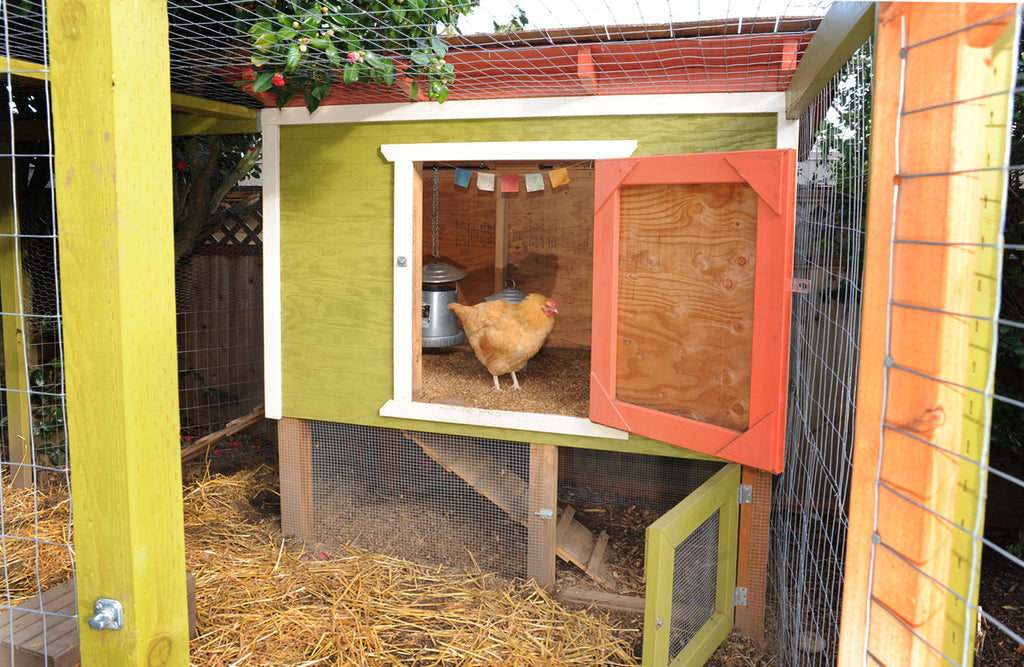 Large, yellow walk-in coop and run