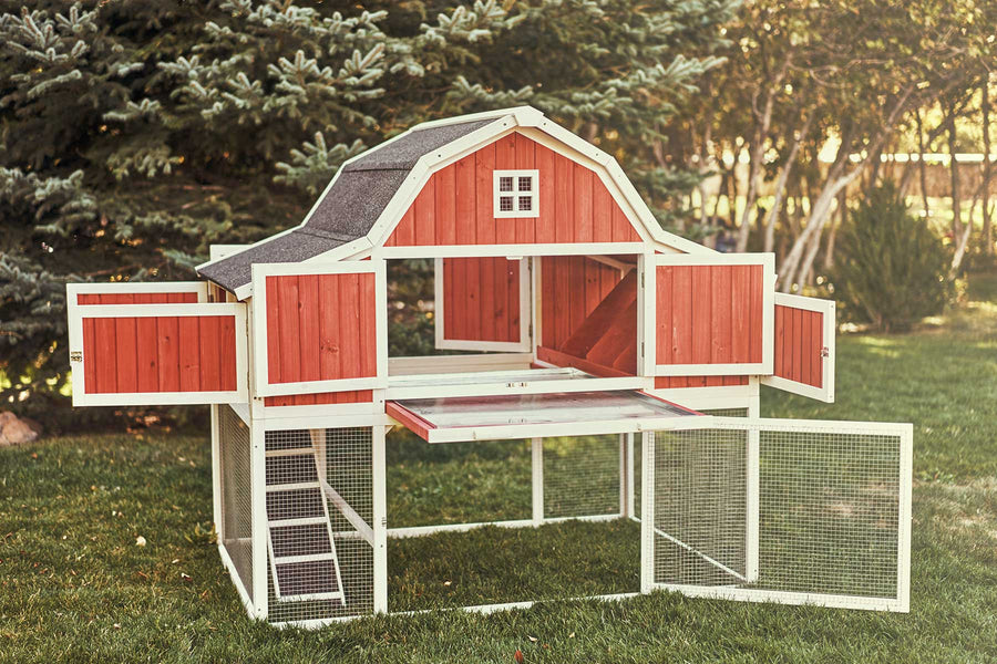 The Barn chicken coop with 11 lockable doors open
