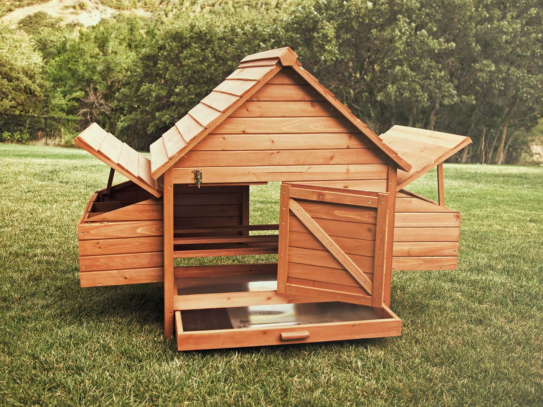 Rambler chicken coop, showing the internal space and sliding mess pan